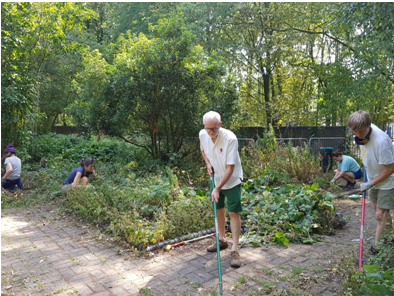 Working with volunteers in the Philip Noel Baker Peace Garden